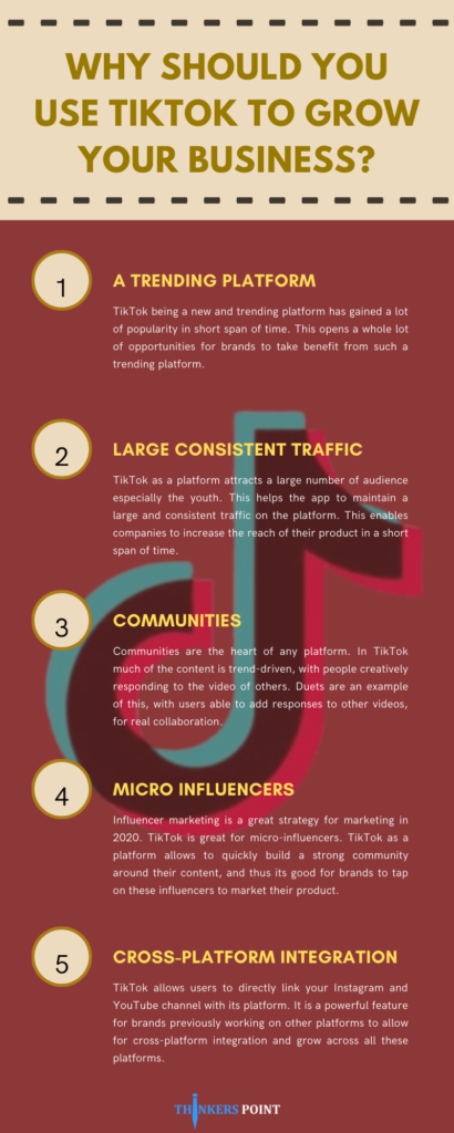 Why Should You Use Tiktok To Grow Your Business [Infographic]